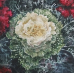 <h5>Cabbage Rose, 10x10</h5>