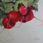 <h5>Radishes, SOLD</h5>