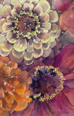 <h5>Zinnia Pinks, 7x13, giclee print available</h5>